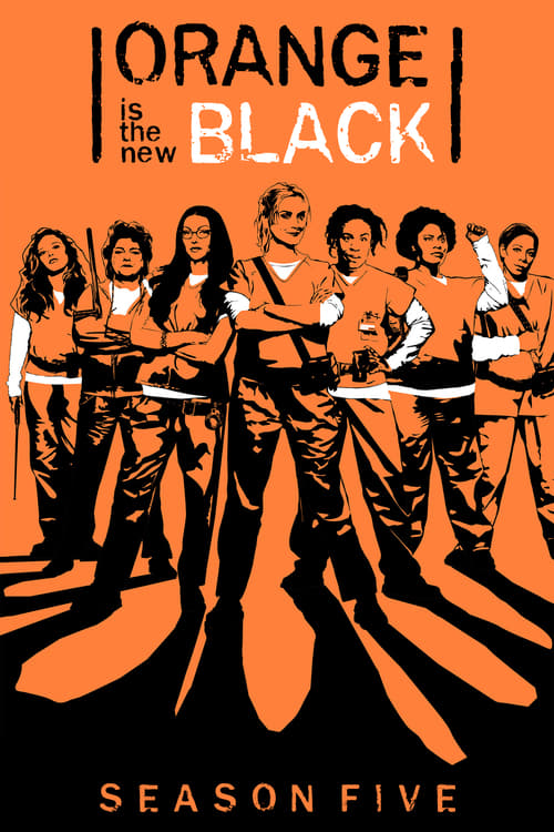 Cover of the Season 5 of Orange Is the New Black