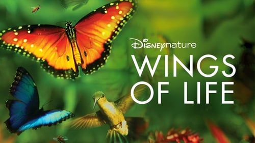 Wings of Life (2011) Watch Full Movie Streaming Online