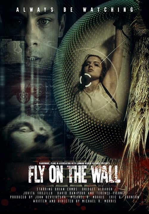 watch Fly on the Wall full movie online stream free HD