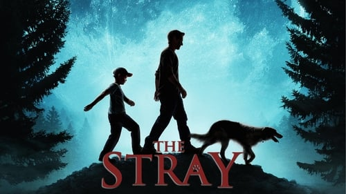 The Stray (2017) Watch Full Movie Streaming Online