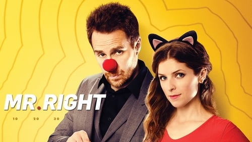 Mr. Right (2016) Watch Full Movie Streaming Online
