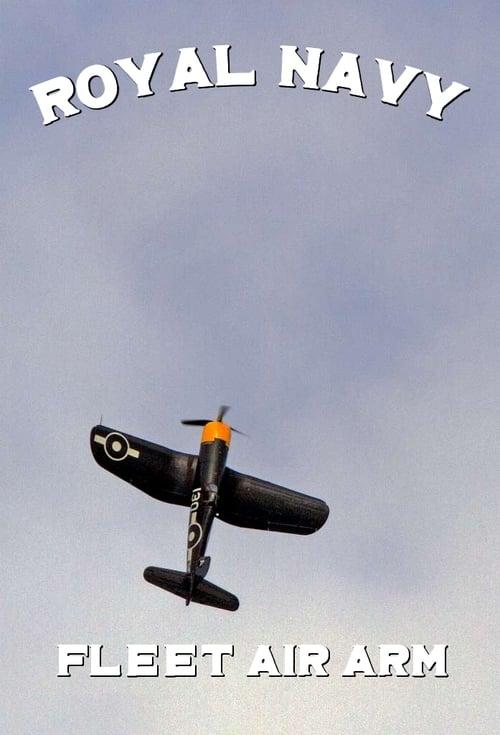 Navy Pilots: Fleet Air Arm
