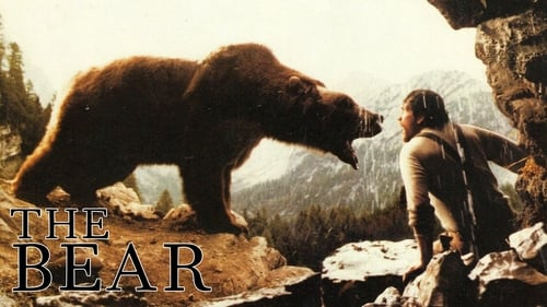 L'Ours (1988) Regarder film gratuit en francais film complet streming gratuits full series