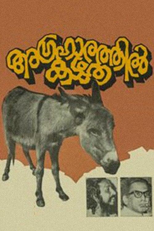 Donkey in a Brahmin Village 1977