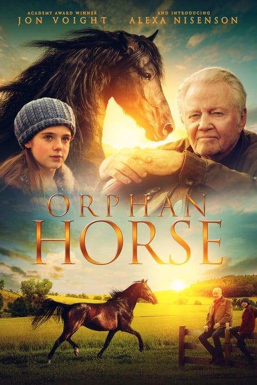 watch Orphan Horse full movie online stream free HD