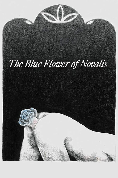 The Blue Flower of Novalis
