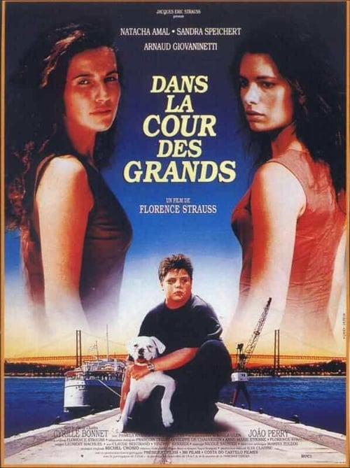 Regarder Dans la cour des grands (1995) le film en streaming complet en ligne