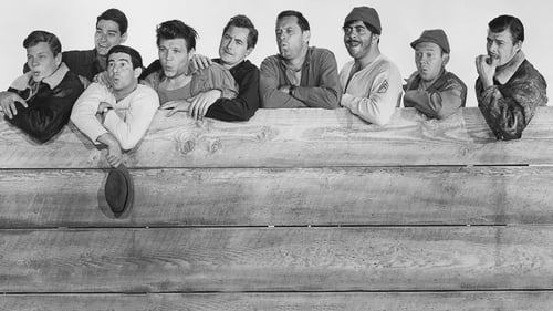 Stalag 17 (1953) Watch Full Movie Streaming Online
