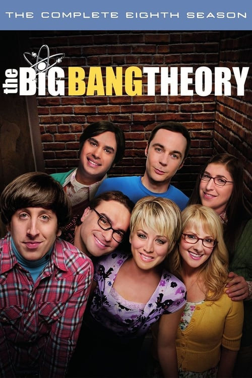 Cover of the Season 8 of The Big Bang Theory