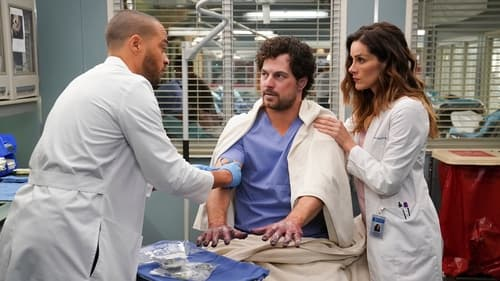 Grey's Anatomy - Season 16 - Episode 15: 15