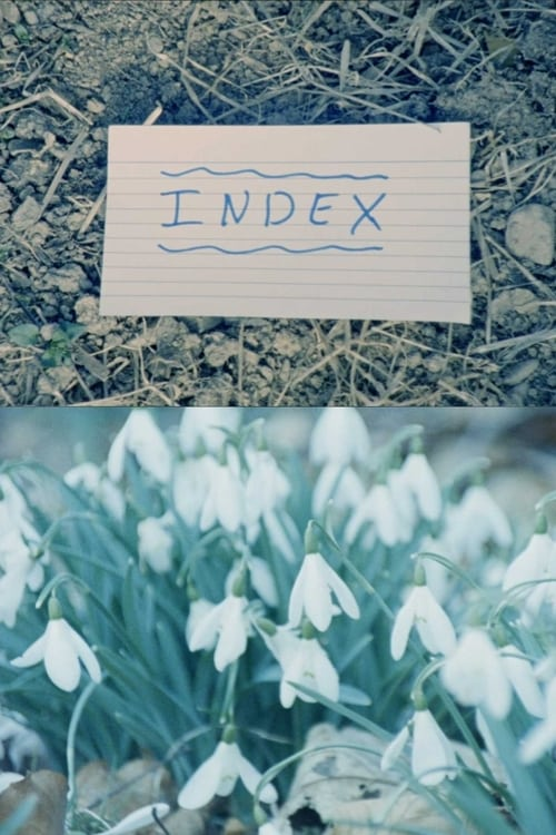 Index (2018)