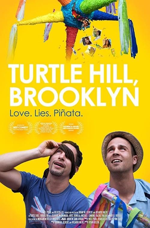 Turtle Hill, Brooklyn (2013) Poster