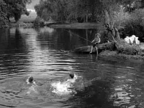 The Twilight Zone 1963 Imdb: Season 5 – Episode The Bewitchin' Pool