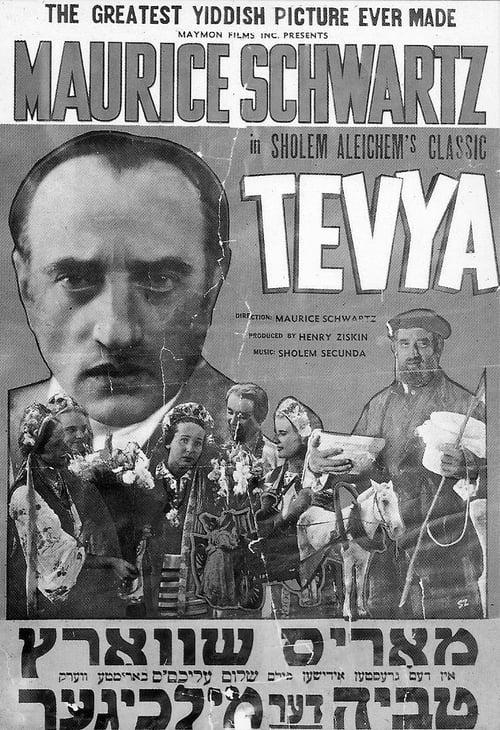 Tevya MEGA