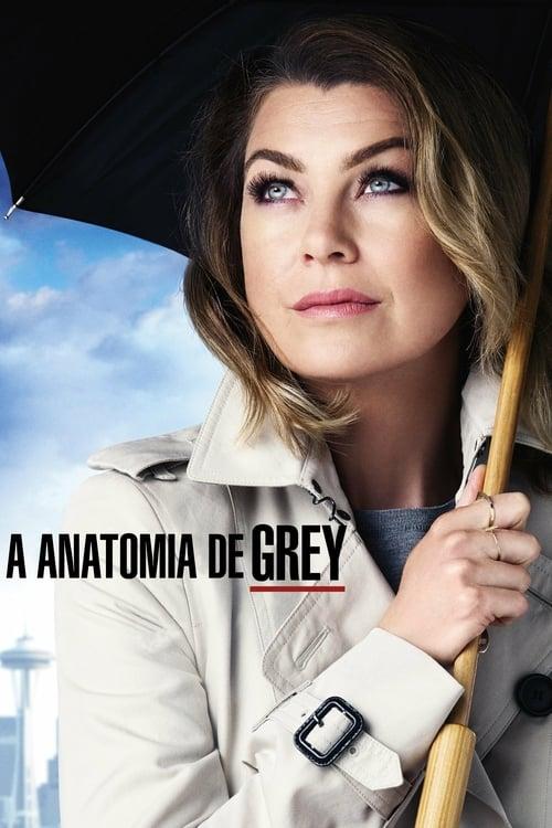 Grey's Anatomy 17ª Temporada Completa 2020 - Dublado WEB-DL 720p | 1080p / Legendado 5.1