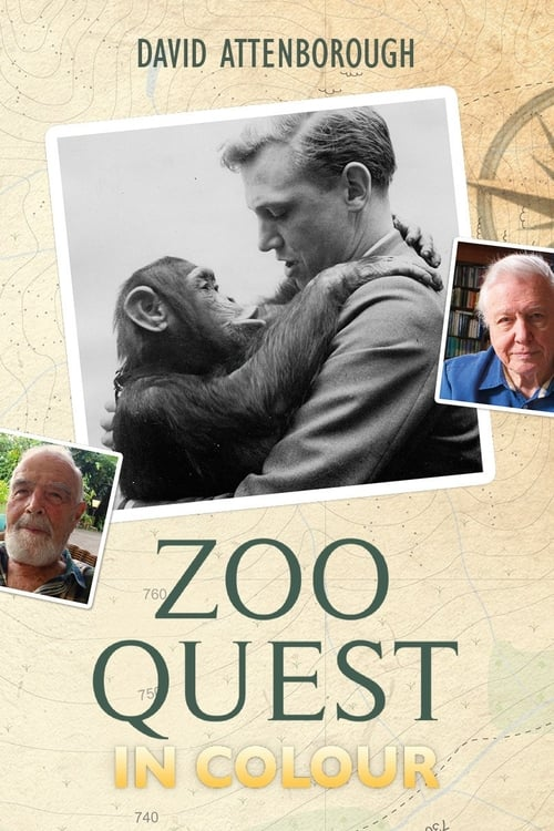 Regarder Le Film Zoo Quest in Colour Gratuit En Ligne