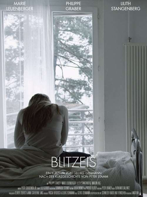 The poster of Blitzeis