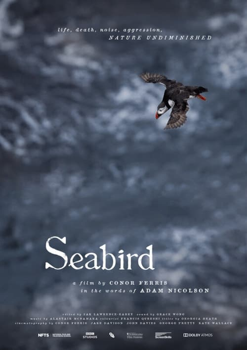 Seabird Full Movie to
