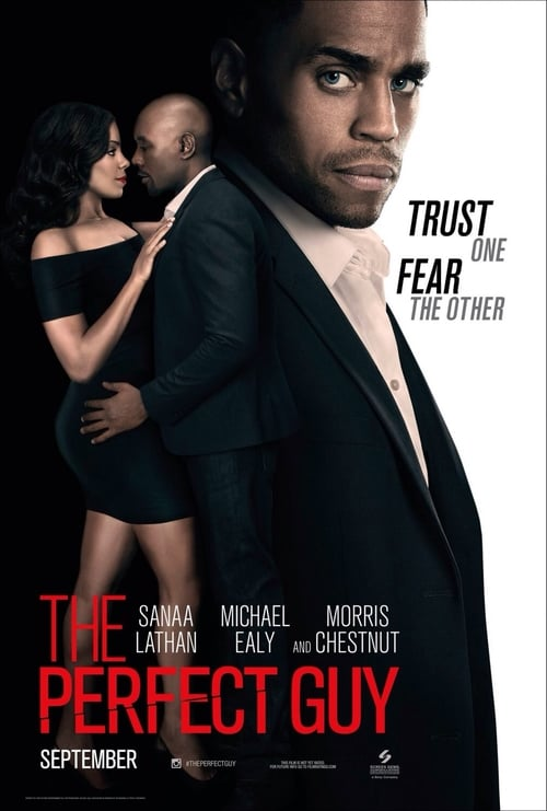 Watch The Perfect Guy (2015) Best Quality Movie