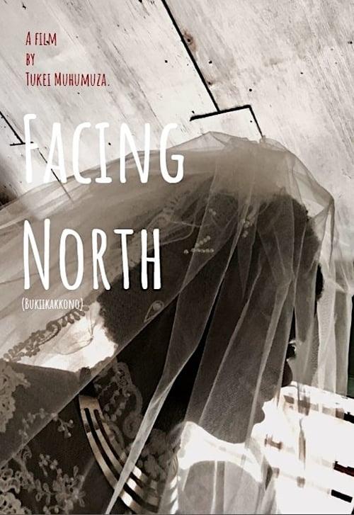 Facing North (2018)
