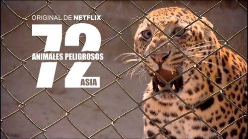 Εικόνα της σειράς 72 Dangerous Animals: Asia