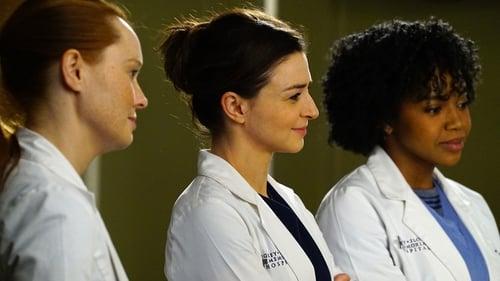 Grey's Anatomy - Season 12 - Episode 17: I Wear the Face
