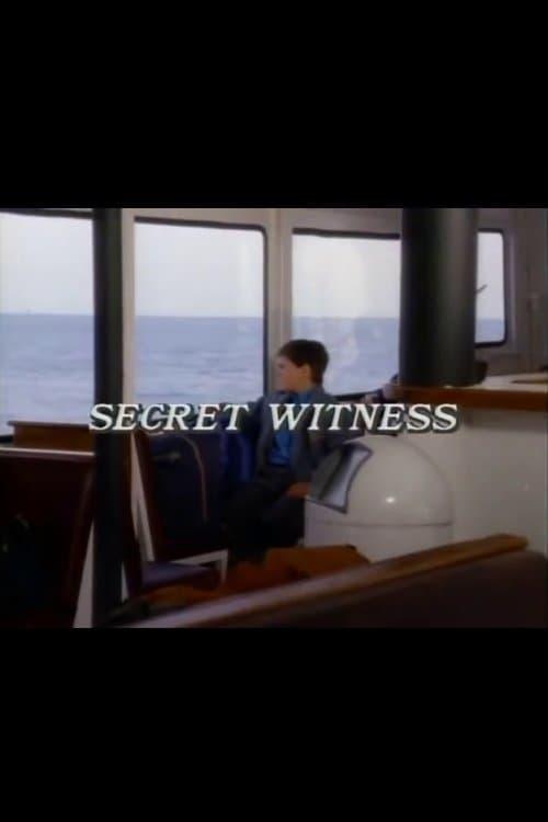 Secret Witness (1988) Poster
