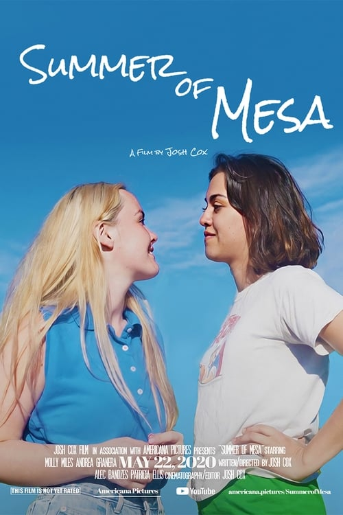 Which Summer of Mesa