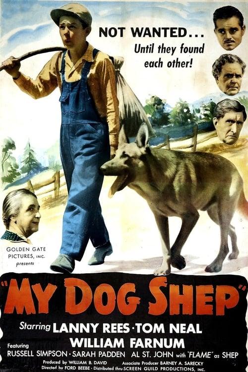 Mira My Dog Shep Gratis En Línea