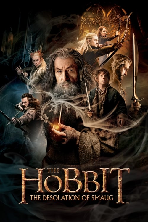 Largescale poster for The Hobbit: The Desolation of Smaug