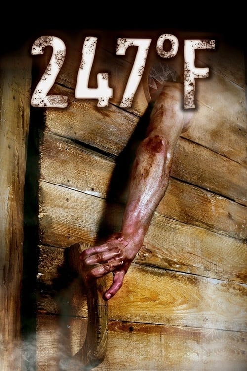 The poster of 247°F