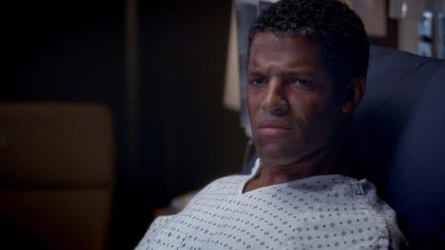 Grey's Anatomy - Season 11 - Episode 12: The Great Pretender