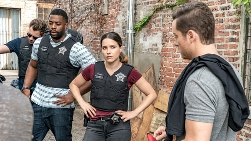 Chicago P.D.: Season 4 – Episode Made a Wrong Turn