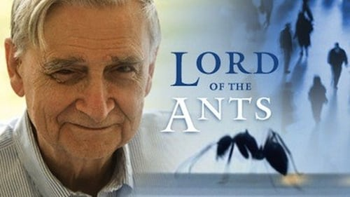 NOVA: Season 35 – Episode Lord of the Ants