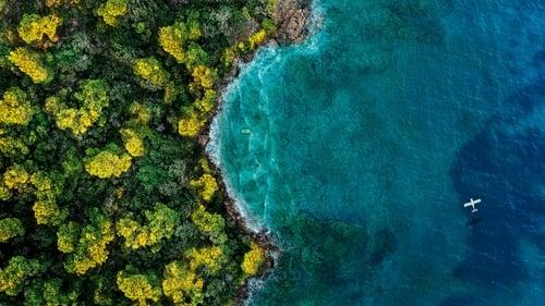 Остров фантазий