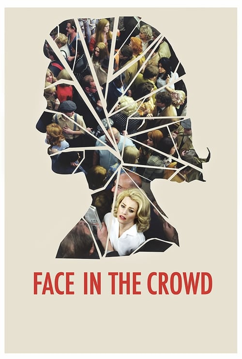 Face in the Crowd (2013)