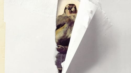 How Long The Goldfinch