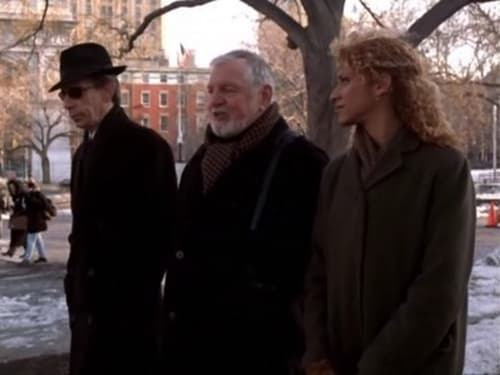 Law & Order: Special Victims Unit - Season 1 - Episode 17: Misleader