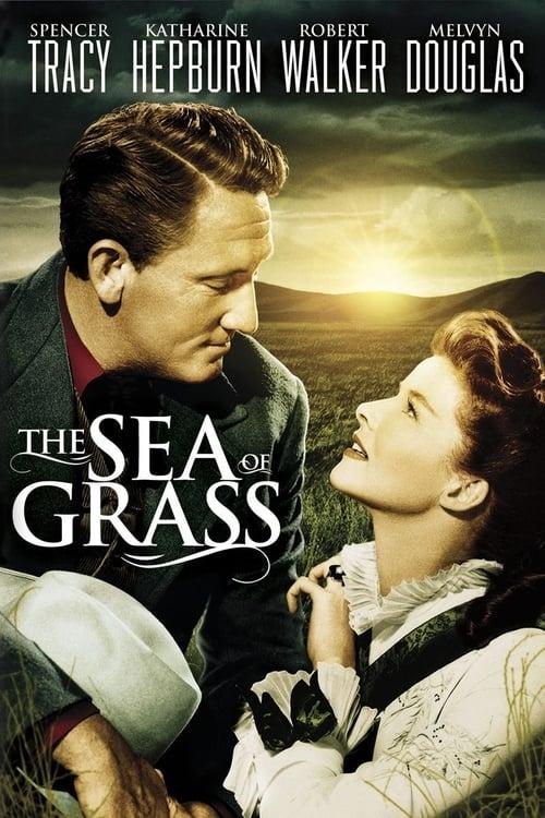 the sea of grass Strhující scéna dospělí brock mě trochu iritoval, možná proto, že mi připomínal  mě samotného he tried to tell me how he felt, how the grass was .