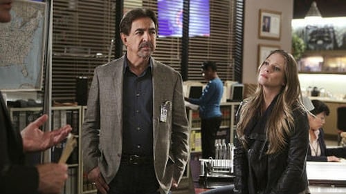 Criminal Minds: Season 10 – Episod Mr. Scratch