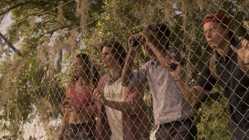 Assistir Outer Banks S01E08 – 1×08 – Dublado
