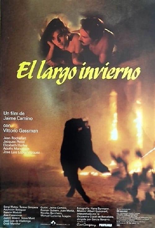 The poster of El largo invierno