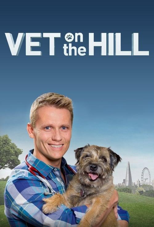 Vet On The Hill (2016)