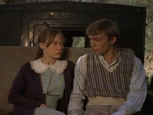 The Waltons 1973 Imdb Tv Show: Season 1 – Episode The Townie