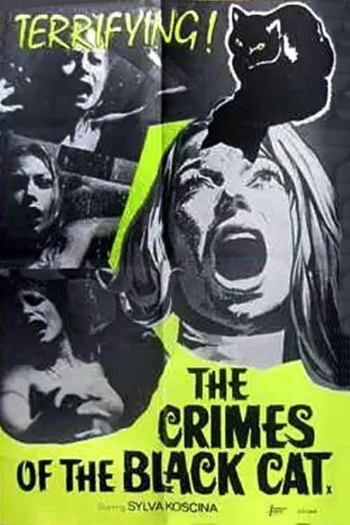 bellissimo stile miglior sito web design popolare The Crimes of the Black Cat (1972) — The Movie Database (TMDb)