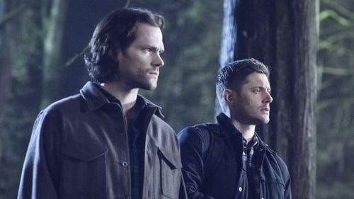Supernatural: Season 14 – Episode Don't Go In The Woods