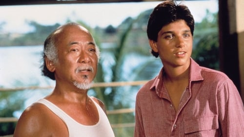 Subtitles The Karate Kid Part II (1986) in English Free Download | 720p BrRip x264