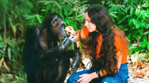 Watch Lucy the Human Chimp Online Torent