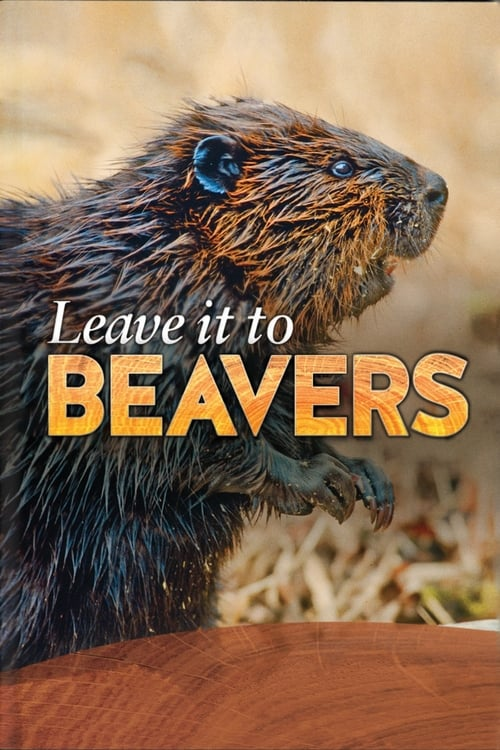Filme Leave it to Beavers Online