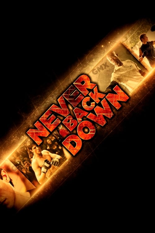 never back down 2008 hindi dubbed download